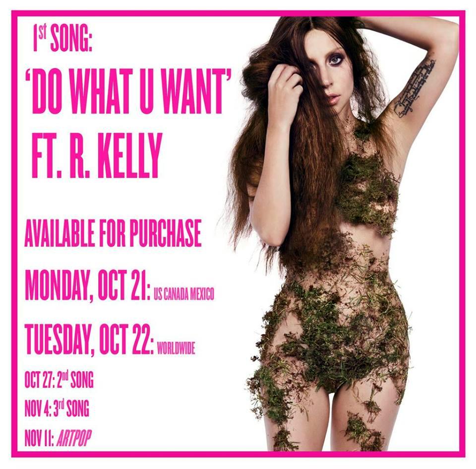 Lady Gaga Do What U Want 2013